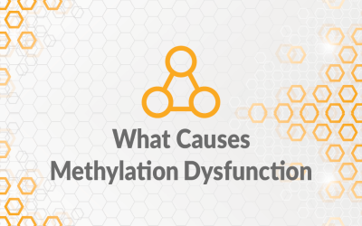 What Causes Methylation Dysfunction?